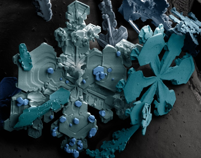 Snow crystals vizualized by a scanning electron microscope. Like other types of crysals, the formation of snow crystals is promoted by nucleates- things for ice to condense and grow onto. Credit:  Agricultural Research Service, United States Department of Agriculture